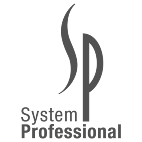 Logo System Professional (SP)